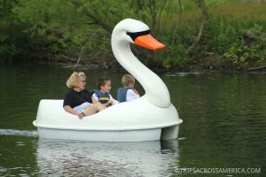 Enjoy the lakes and wildlife in Roger Williams Park with a swan paddle boat, electric boat, canoe, or kayak rental.
